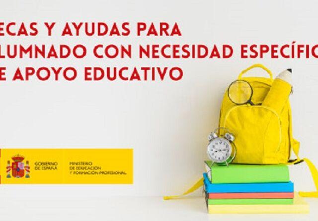 agustinasva_2018_ayudas_necesidades-ministerio